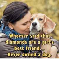Best Of Memes: Talks  Whoever said that  diamonds are a girl  best friend  Never owned a dogo
