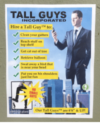 "Head, Tumblr, and Blog: TALL GUYS  INCORPORATED  Hire a Tall GuyTM to:  Clean your gutters  Reach stuff on  top shelf  Get cat out of tree  Retrieve balloon  Swat away a bird that  is near vour head  Put you on his shoulders  just for fun  NO  SMALL  GUYS  Our Tall GuysTM are 6'6"" & UP!  plant <p><a href=""http://obviousplant.com/post/166470008293/hire-a-tall-guy"" class=""tumblr_blog"">obviousplant</a>:</p>  <blockquote><p>Hire a Tall Guy™</p></blockquote>"