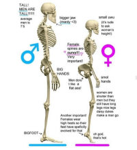 nice legs daisy dukes: TALL!  MEN ARE  ALL!!  average  men is  7'5  bigger jaw  (manly <3)  small uwu  (it's rude  to ask  woman's  height!)  Female  spines are  curvy!!  Very  important!  BIG  HANDS  smol  hands  Men don/  t like a  flat ass!  women are  shorter than  men but they  still have long  legs nice legs  daisy dukes  Another importmake a  Females wear  high heels so their  feet have speficilly  evolved for that  BIGFOOT  oh god,  that's hot