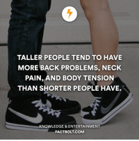 Memes, Knowledge, and 🤖: TALLER PEOPLE TEND TO HAVE  MORE BACK PROBLEMS, NECK  PAIN, AND BODY TENSION  THAN SHORTER PEOPLE HAVE.  KNOWLEDGE & ENTERTAINMENT  FACT BOLT COM Comment your height below! factbolt