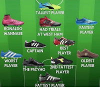 Memes, Wannabe, and Best: TALLEST PLAYER  RONALDO  WANNABE  HAD TRIALS  AT WEST HAM  FASTEST  PLAYER  BEST  PLAYER  CAPTAIN  WORST  PLAYER  OLDEST  _2N  D FATTEST1 PLAYER  THE PSCYHO  PLAYER  FATTEST PLAYER Sunday League Teams 😆👍