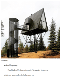 Imagine hiking through the woods then you see this: tambourgi  evilbuildingsblog.  e the Norvegian  this is my sexy modernist baba yaga hut Imagine hiking through the woods then you see this