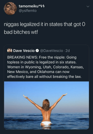 Which States Got The Baddest Bitches🤔 (via /r/BlackPeopleTwitter): tamomeiku*44  @yslfemto  niggas legalized it in states that got 0  bad bitches wtf  Dave Vescio  @DaveVescio 2d  BREAKING NEWS: Free the nipple: Going  topless in public is legalized in six states.  Women in Wyoming, Utah, Colorado, Kansas,  New Mexico, and Oklahoma can now  effectively bare all without breaking the law. Which States Got The Baddest Bitches🤔 (via /r/BlackPeopleTwitter)