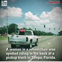 Memes, News, and Florida: Tampa, Florida  FOX  NEWS  A woman in a wheelchair was  spotted riding in the back ofa  pickup truck in Tampa, Florida Check out this wild ride in Florida! A woman in a wheelchair was strapped to the back of a pickup truck.