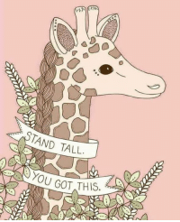 Whatever today brings....Stand Tall. You got this💖 #lularoewithtabithaandrews Questions?! Ask them. I'm here for you!!: TAND TALL  YOU GOT THIS Whatever today brings....Stand Tall. You got this💖 #lularoewithtabithaandrews Questions?! Ask them. I'm here for you!!