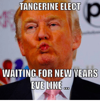 Memes, New Year's, and 🤖: TANGERINE ELECT  WAITING FOR NEW YEARS  EVELIKE It's the 23 of DEC and @realdonaldtrump is all puckered up and and for #NewYearsEve #pelosmelapela #TangerineElect I have an OYO he can practice on till the 31st ( ha Hmmm)