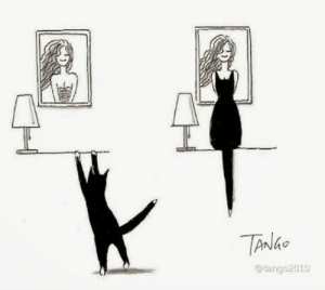Artistic Cat Uses His silhouette To Create Funny Images: TANGO  @tango2010 Artistic Cat Uses His silhouette To Create Funny Images