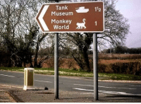 Work, Monkey, and World: Tank  Museum  Monkey  World  2 So many Distractions on my way to work.