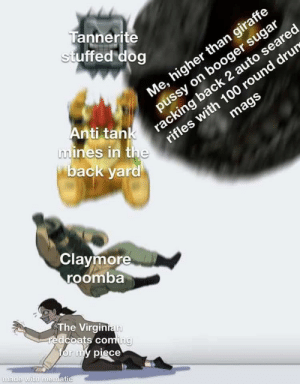 *distant incoherent boogaloo noises intensifies*: Tannerite  stuffed dog  Me, higher than giraffe  pussy on booger sugar  racking back 2 auto seared  mags  Anti tank  mines in the  back yard  rifles with 100 round drur  Claymore  roomba  The Virginian  redcoats coming  for my piece  made with mematic *distant incoherent boogaloo noises intensifies*