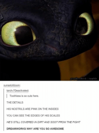 soot: Taphrofberk tumblr  Sunset ofdoom:  tarch-7Deactivated:  Toothless is so cute here.  THE DETAILS  HIS NOSTRILS ARE PINK ON THE INSIDES  YOU CAN SEE THE EDGES OF HIS SCALES  HE'S STILL COVERED IN DIRTAND SOOT FROM THE FIGHT  DREAMWORKS WHY ARE YOU SO AWESOME