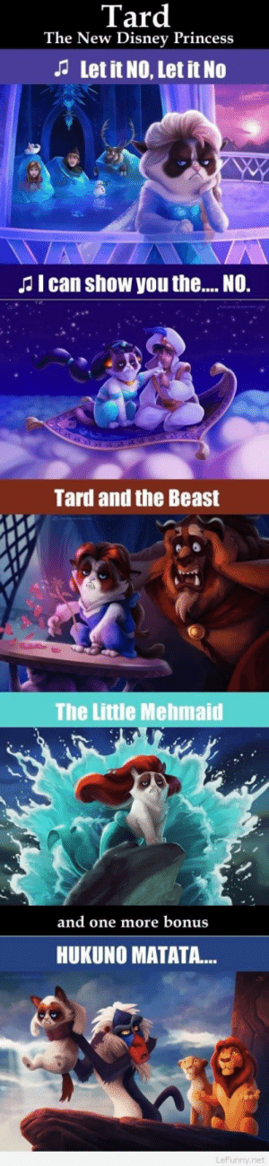 Disney, Funny, and Grumpy Cat: Tard  The New Disney Princess  Let it NO, Let it No  Jl can show you th.... NO.  Tard and the Beast  The Little Mehmaid  and one more bonus  HUKUNO MATATA...  LeFunny.net The new Disney Princess – Funny grumpy cat pics