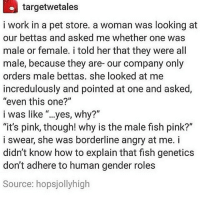 "adhere: targetwetales  i work in a pet store. a woman was looking at  our bettas and asked me whether one was  male or female. i told her that they were all  male, because they are- our company only  orders male bettas. she looked at me  incredulously and pointed at one and asked  ""even this one?""  i was like ""...yes, why?""  ""it's pink, though! why is the male fish pink?""  i swear, she was borderline angry at me. i  didn't know how to explain that fish genetics  don't adhere to human gender roles  Source: hopsjollyhigh"
