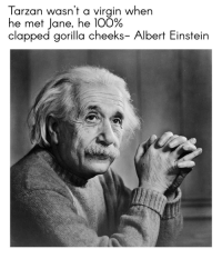 "Albert Einstein, Anaconda, and Memes: Tarzan wasn't a virgin when  he met Jane, he 100%  clapped gorilla cheeks- Albert Einstein <p>Such a wise man via /r/memes <a href=""https://ift.tt/2pLV9Fu"">https://ift.tt/2pLV9Fu</a></p>"