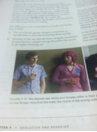 therhymenoceros:  so scott pilgrim is in the mating section of my biology textbook : tatee a wating poti  while men aee  He  wih ring fios a low sality male or a male  o povide any parental ivestment st access t  ess E 9.19) For a male, the  shes ofs poor choie are less dire ile beyond ce  e s  eohved in mating  net  wn the sessal bchavior of males and females  t the ses with the greater energetic investment in  pion is more discriminating about mating  A Members  of  the sex with the lower  energetic investment  etion compete among themselves for aceess  First we ea  hs the h  investing sex  RGURE 9-19 The choosier sex. Males and females differ in their  For the female more than the male, the choice of the wrong mats  TER  EVOLUTION AND BEHAVIOR therhymenoceros:  so scott pilgrim is in the mating section of my biology textbook