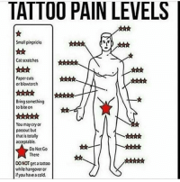 Memes, 🤖, and Bite: TATTOO PAIN LEVELS  Small pinpricks  Cat scratches  Paper cuts  or blowtorch  Bring something  to bite on  You may cry or  passout but  that is totally  acceptable.  Do Not Go  There  DO NOT get tattoo  while hangowetor  if you have a cold. Mine killed 😂😂😂😂