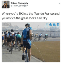 Memes, Tour De France, and 🤖: Tatum Strangely  Tatum Strangely  When you're 5K into the Tour de France and  you notice the grass looks a bit dry @tatum.strangely has an awesome page!! Mae sure to follow 🔥🔥🔥