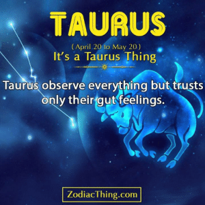 Observe: TAURUS  (April 20 to May 20)  It's a Taurus Thing  Taurus observe everything but trusts  only their gut feelings.  ZodiacThing.com