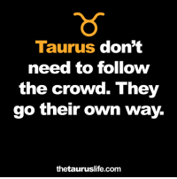 Taurus, Com, and Own: Taurus don't  need to follow  the crowd. They  go their own way.  thetauruslife.com