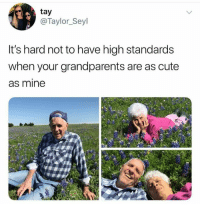 Cute, Mine, and Taylor: tay  @Taylor_Seyl  It's hard not to have high standards  when your grandparents are as cute  as mine