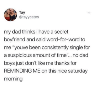 "meirl: Tay  @tayycates  my dad thinks i have a secret  boyfriend and said word-for-word to  me ""youve been consistently single for  a suspicious amount of time""... no dad  boys just don't like me thanks for  REMINDING ME on this nice saturday  morning meirl"