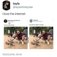 🤣Legendary: tayla  @ayeeitstaylaa  I love the internet  Kangaroo  Beerbongs & Bentleys  @PostMalone  ー@YourFaVKangaroo  met a koala today  met Shia LaBeouf today  03/02/2018, 09:30 🤣Legendary