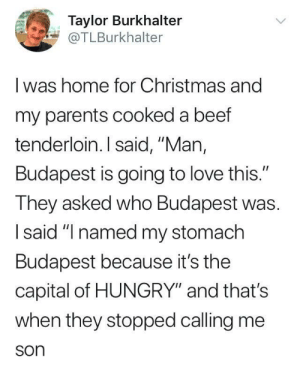 """Beef, Christmas, and Dank: Taylor Burkhalter  @TLBurkhalter  I was home for Christmas and  my parents cooked a beef  tenderloin. I said, """"Man,  Budapest is going to love this.""""  They asked who Budapest was.  Isaid """"I named my stomach  Budapest because it's the  capital of HUNGRY"""" and that's  when they stopped calling me  son me irl by where_aremy_pants FOLLOW 4 MORE MEMES."""