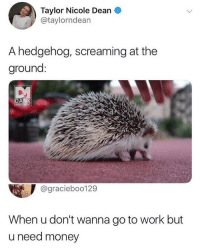 Memes, Money, and Work: Taylor Nicole Dean O  @taylorndean  A hedgehog, screaming at the  ground  @graciebo0129  When u don't wanna go to work but  u need money WTH