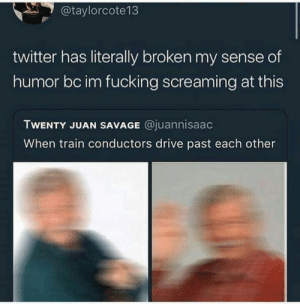 Fucking, Memes, and Savage: @taylorcote13  twitter has literally broken my sense of  humor bc im fucking screaming at this  TWENTY JUAN SAVAGE @juannisaac  When train conductors drive past each other I wonder how the drivers greet each other via /r/memes https://ift.tt/2DGesbO