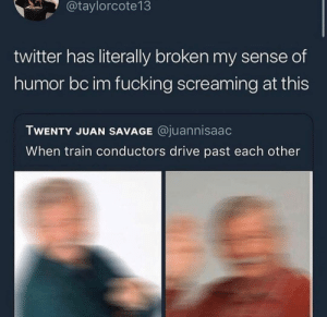 Dank, Fucking, and Memes: @taylorcote13  twitter has literally broken my sense of  humor bc im fucking screaming at this  TWENTY JUAN SAVAGE @juannisaac  When train conductors drive past each other A blurry wave. by lloydyhats MORE MEMES