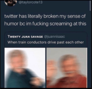 Fucking, Savage, and Tbh: @taylorcote13  twitter has literally broken my sense of  humor bc im fucking screaming at this  TWENTY JUAN SAVAGE @juannisaac  When train conductors drive past each other Same tbh