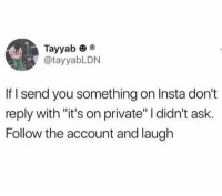 "Memes, 🤖, and Ask: Tayyab o  @tayyabLDN  If I send you something on Insta don't  reply with ""it's on private"" I didn't ask  Follow the account and laugh 🌟 Dm this to absolutely everyone 🌟"