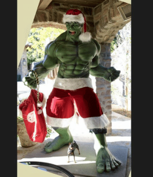#TBT Just another Christmas decoration at the Dunham house! To see how big #thehulk really is, don't miss our little Roadie down by his feet! #merrychristmas in April!: #TBT Just another Christmas decoration at the Dunham house! To see how big #thehulk really is, don't miss our little Roadie down by his feet! #merrychristmas in April!