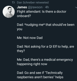 """Dad, Doctor, and Elf: tDan Schreiber retweeted  James @jrawson 4h  Flight attendant: Is there a doctor  onboard?  Dad: *nudging me* that should've been  you  Me: Not now Dad  Dad: Not asking for a QI Elf to help, are  they?  Me: Dad, there's a medical emergency  happening right now  Dad: Go and see if """"Technically  raspberries aren't berries"""" helps Neither are strawberries"""