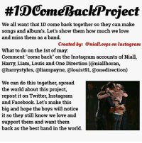 """#TDComelBackProject  We all want that ID come back together so they can make  songs and albums. Let's show them how much we love  and miss them as a band.  created by: @niall.cops on instagram  What to do on the 1st of may:  Comment """"come back"""" on the Instagram accounts of Niall,  Harry, Liam, Louis and One Direction (aniallhoran,  @harry styles, a liampayne, alouist91, @onedirection)  We can do this together, spread  the world about this project,  repost it on Twitter, Instagram  and Facebook. Let's make this  big and hope the boys will notice  it so they still know we love and  support them and want them.  back as the best band in the world. I think this is an easy thing for our fandom... We can actually do this... Can't we? Yes we can... So plzz just share as much as u can and do it...plzzzzzzzzzz request from me and the @niall.oops"""