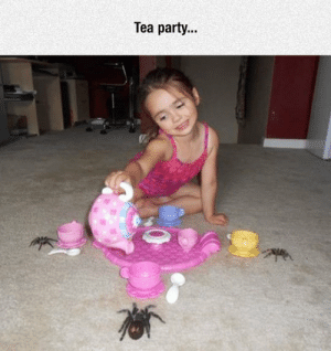 srsfunny:A Nope Party For Me: Tea party.. srsfunny:A Nope Party For Me