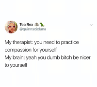 Bitch, Dumb, and Yeah: Tea Rex  @quinnscicluna  My therapist: you need to practice  compassion for yourself  My brain: yeah you dumb bitch be nicer  to yourself @quinnscicluna