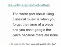 """Google, Music, and The Worst: tea-with-a-splash-of-kitten:  The worst part about liking  classical music is when you  forget the name of a piece  and you can't google the  lyrics because there are none  No results found for """"there was a really good bit with a flute <p>Worst Part About Liking Classical Music.</p>"""