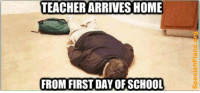 first day of school see more teacher memes at http://wp.me/P1b9wZ-GU: TEACHER ARRIVES HOME  FROM FIRST DAY OF SCHOOL first day of school see more teacher memes at http://wp.me/P1b9wZ-GU