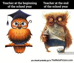 Life, School, and Teacher: Teacher at the beginning  of the school year  Teacher at the end  of the school year  VIA THEMETAPICTURE.COM  you should probably go to TheMetaPicture.com srsfunny:Life Of A High School Teacher