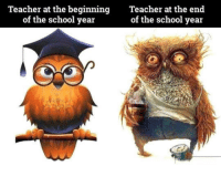 Life, School, and Teacher: Teacher at the beginningTeacher at the end  of the school year  of the school year <p>Life Of A High School Teacher.</p>