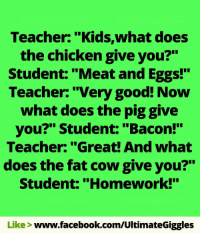 """Doe, Facebook, and Memes: Teacher: """"Kids,what does  the chicken give you?""""  Student: """"Meat and Eggs!""""  Teacher: """"Very good! Now  what does the piggive  you?"""" Student: """"Bacon!""""  Teacher: """"Great! And what  does the fat cow give you?""""  Student: """"Homework!""""  Like  www.facebook.com/UltimateGiggles"""