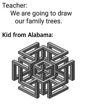 They like to spin: Teacher:  We are going to draw  our family trees.  Kid from Alabama: They like to spin