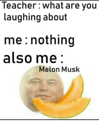 Being Alone, Meme, and Memes: Teacher: what are you  laughing about  me: nothing  also me  Melon Musk It is alright if you didnt get the above meme because you must have an IQ of 1000 to even understand what Musk said let alone think like him. So normal people like me are better off with this Elon Musk meme. via /r/memes http://bit.ly/2VjuNd6