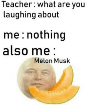 Teacher, Musk, and You: Teacher: what are you  laughing about  me nothing  also me  Melon Musk Melon Musk