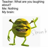 Meme, Monsters Inc, and Shrek: Teacher: What are you laughing  about?  Me: Nothing  My brain:  Shron k shrek meme about your teacher asking what are you laughing at and its about shrek shronk mike wazowski monsters inc