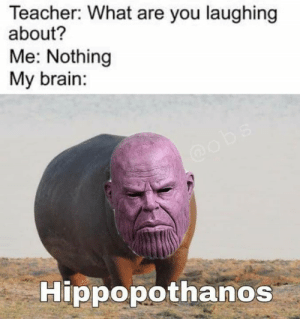 Memes, Teacher, and Brain: Teacher: What are you laughing  about?  Me: Nothing  My brain:  Hippopothanos