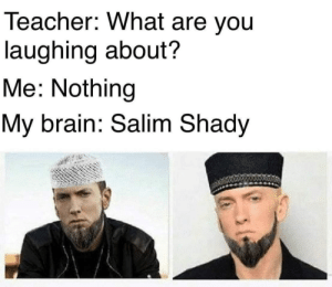 shady: Teacher: What are you  laughing about?  Me: Nothing  My brain: Salim Shady