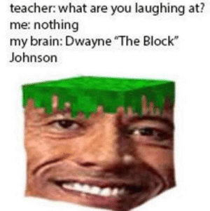 Teacher, Brain, and You: teacher: what are you laughing at?  me: nothing  my brain: Dwayne The Block  Johnson