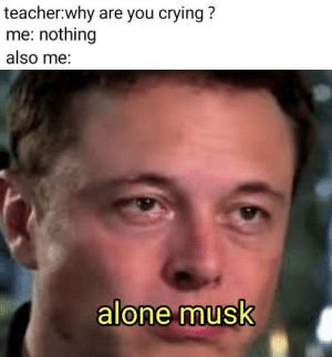 Why Are You Crying: teacher:why are you crying?  me: nothing  also me:  alone musk