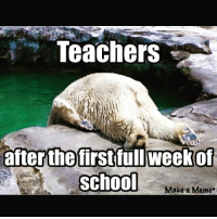 More like after the first day. bts: Teachers  after the first full week of  School  Make a Meme+ More like after the first day. bts